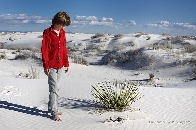 4-WEB-Feature-June-White_Sands-New_Mexico-gypsom-dunes-AaIMG_6102