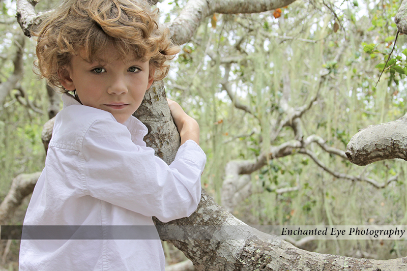 Curl Haired boy in Elfin Forest, California.