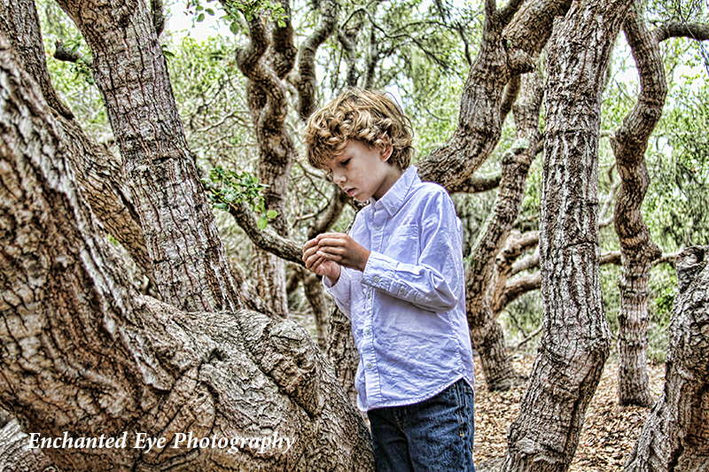 Curl haired blonde boy in Elfin Forest near Morro Bay, California.